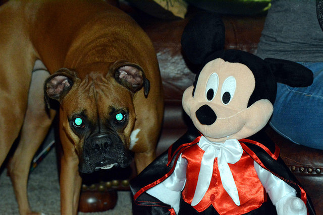 Steve Baker Mickey Mouse, the Vampire, and his hellish hound.