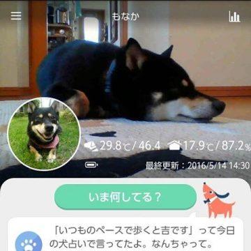 わんダント2アプリ画面