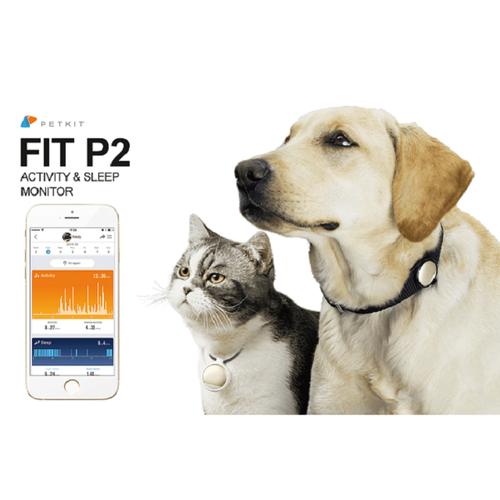 Fit P2